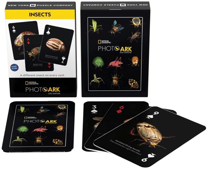 NatGeo Cards - Insects
