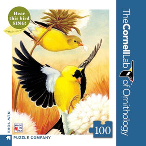 American Goldfinch Mini