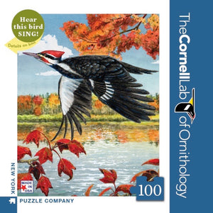 Pileated Woodpecker Mini