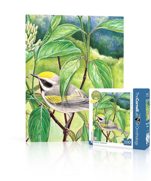 Golden-winged Warbler Mini