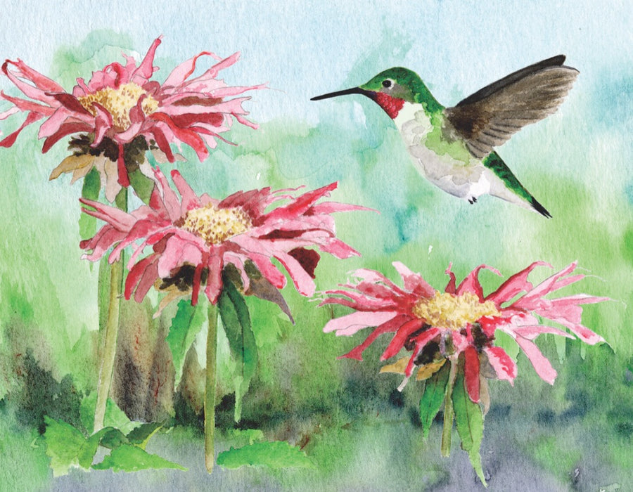 Ruby-throated Hummingbird Mini