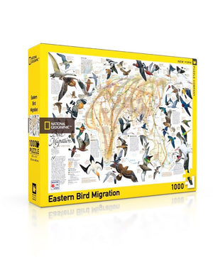 Eastern Bird Migration