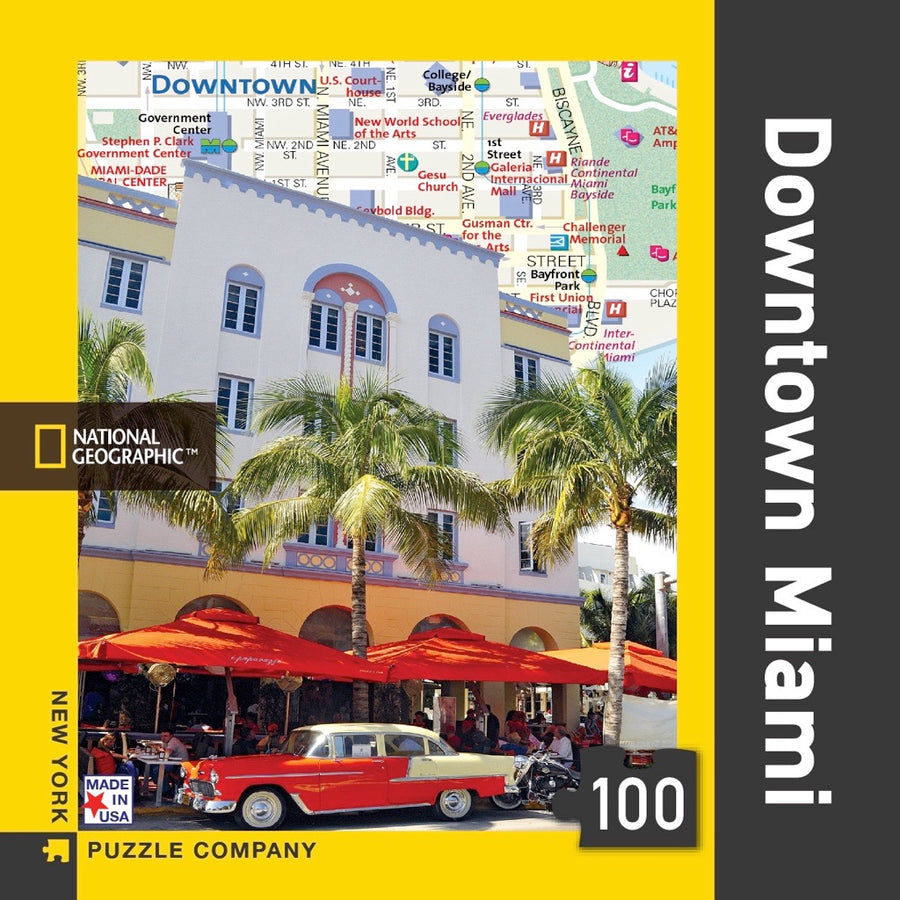 Downtown Miami Mini