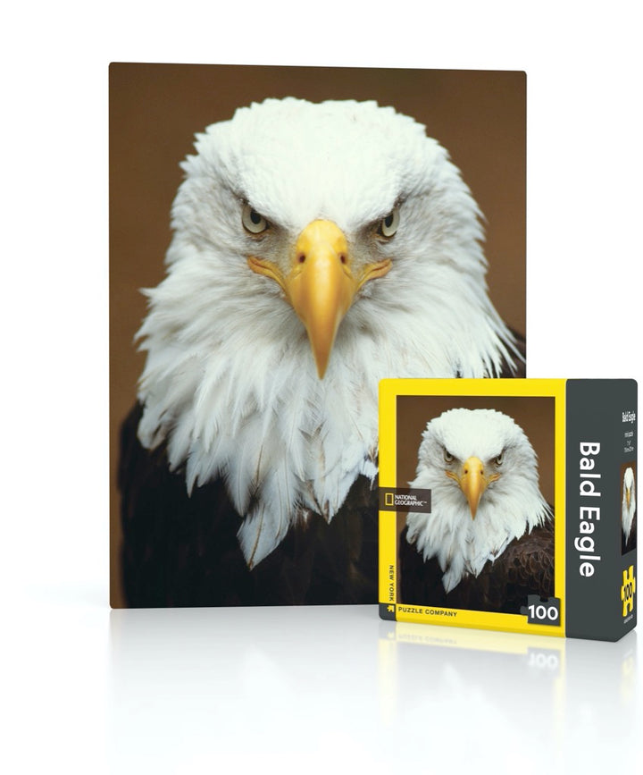 Bald Eagle Mini