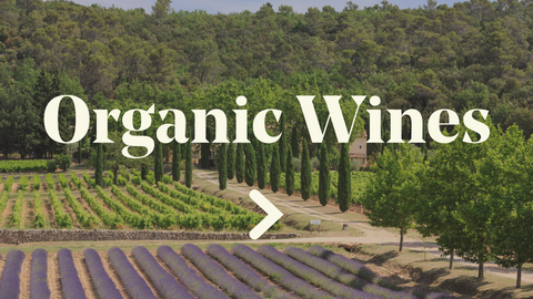 Organic Wines Page - Pierre Hourlier Wines