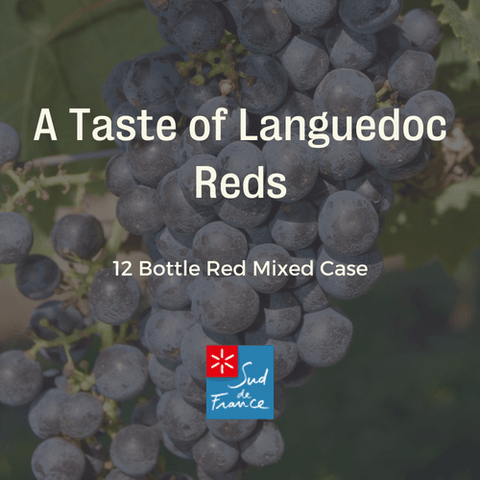12 Bottle Mixed Case: Taste of Languedoc Reds - Pierre Hourlier Wines