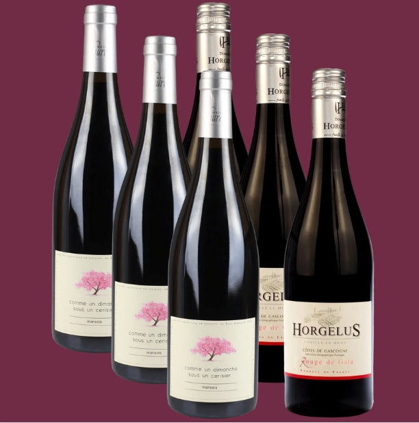 6 Bottle Mixed Case: Great Value Occitania - Pierre Hourlier Wines