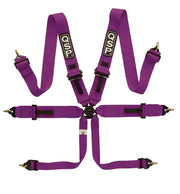 6-point FIA Pro Plus Harness