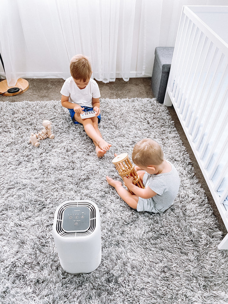 AP8030 Air Purifier With True HEPA-13 Filter