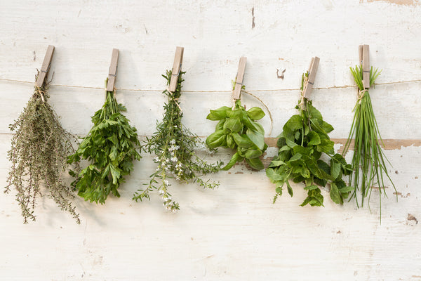 From Mint to Marjoram - How to Harness The Power of Herbs in Your Kitchen