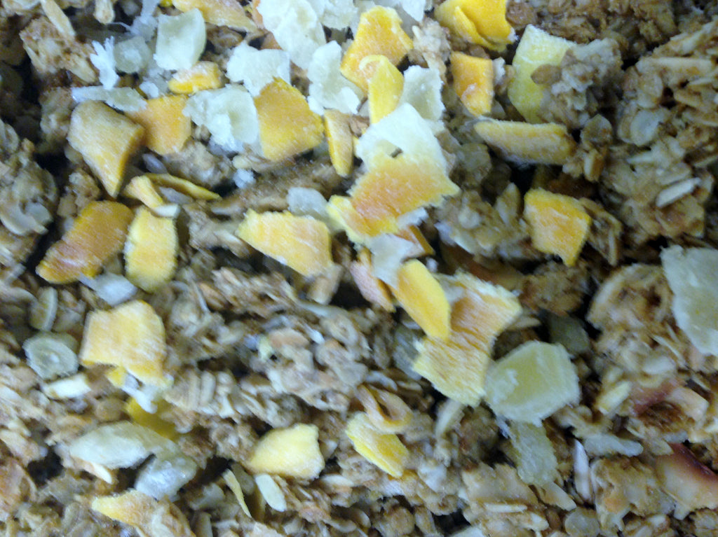 Alison's Blend:  Tropical Fruit Granola with Coconut and Almonds