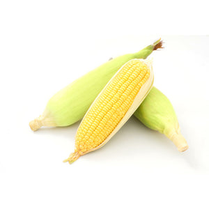 Sweet Corn Pre Pack (minimum 3)