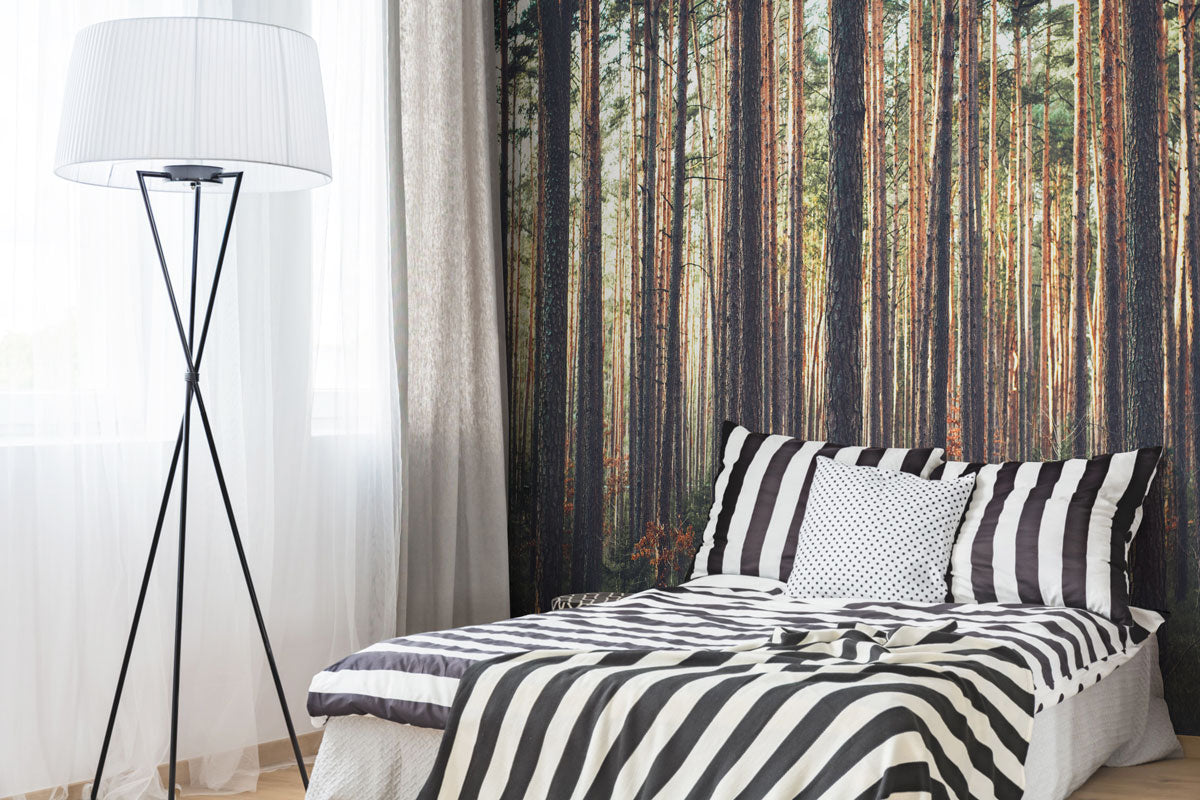 Bedroom Wall Murals Eazywallz