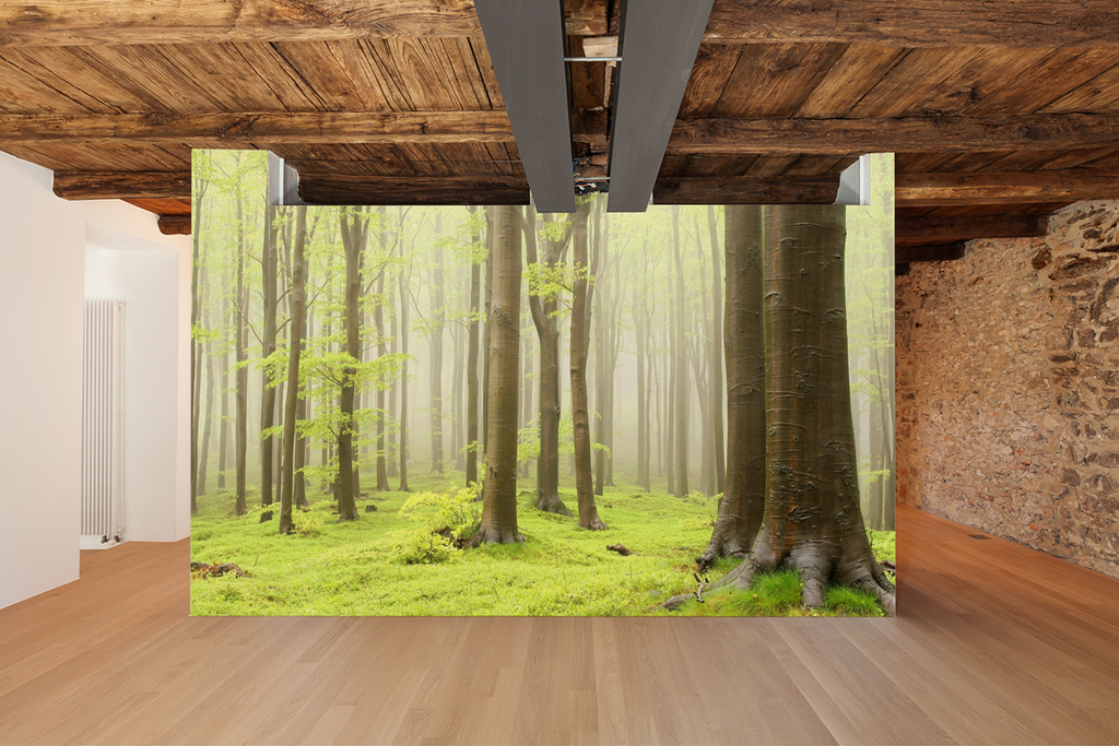 wall mural spring eco green summer wallphoto wallpaper art decor home interior design wallart forest tree line