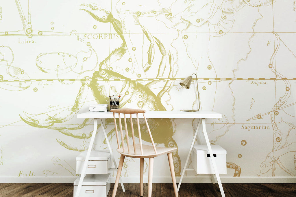 Zodiac astrology sign  scorpio wallpaper and wall mural