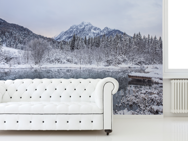 Winter Landscape in Slovenia Wall Mural