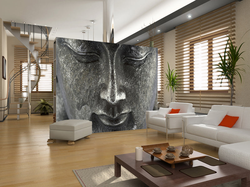Wall Murals For Your Home Wall Murals Ideas Eazywallz