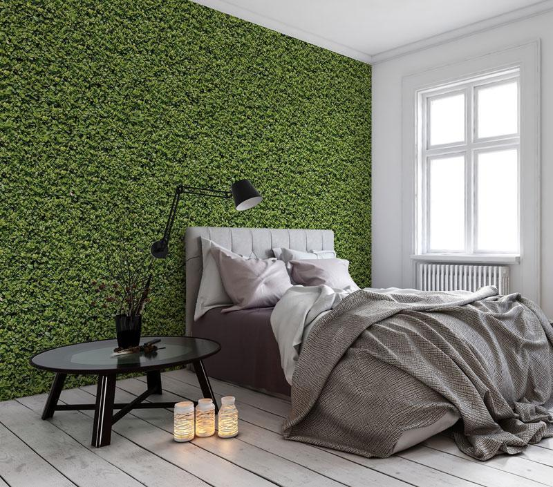 Evergreen Removable Wallpaper