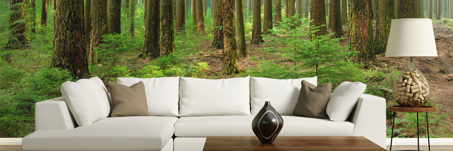 Forest Wall Murals Tree Wall Murals Eazywallz