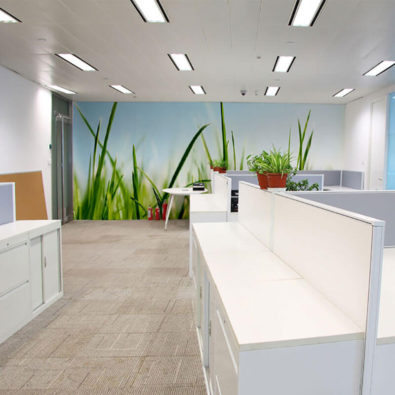 Grass wall mural in office space