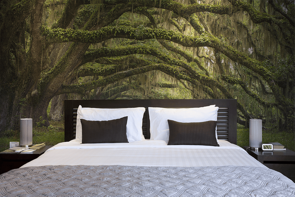 OAK TREE FOREST WALL MURAL
