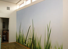 Eazywallz wall mural customer example 28