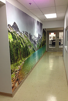 Eazywallz wall mural customer example 34