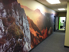Eazywallz wall mural customer example 8