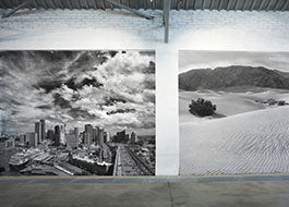 Photography Wall Mural