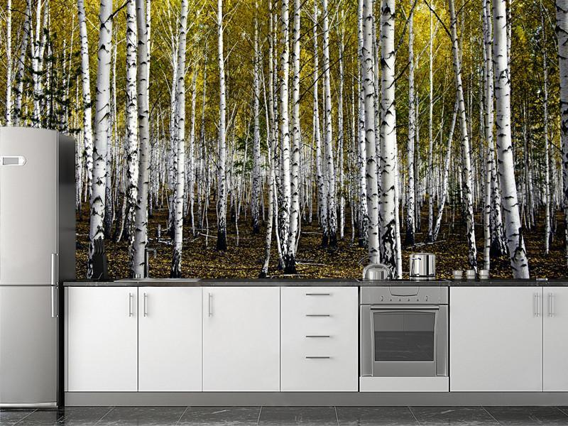 Autumn birch forest wall mural eazywallz for Brewster birch wall mural