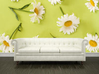 Camomiles Wall Mural-Florals,Featured Category of the Month-Eazywallz