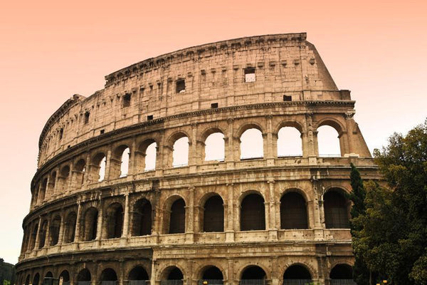 Colosseum In Rome Italy Wall Mural Eazywallz