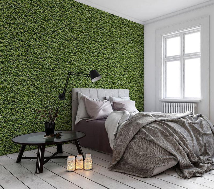 Evergreen Removable Wallpaper-wallpaper-Eazywallz