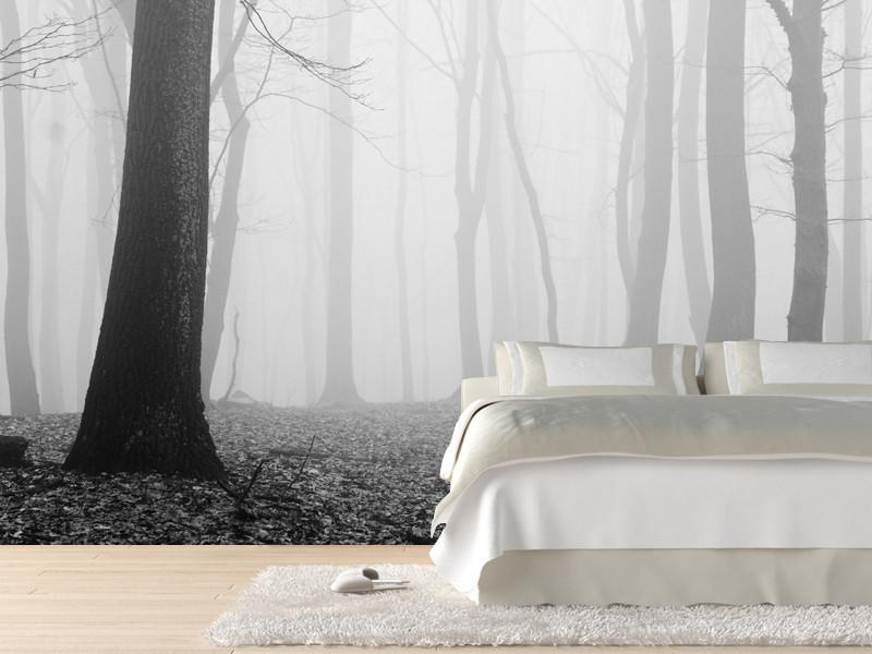 Forest in fog Wall Mural-Black & White,Landscapes & Nature-Eazywallz