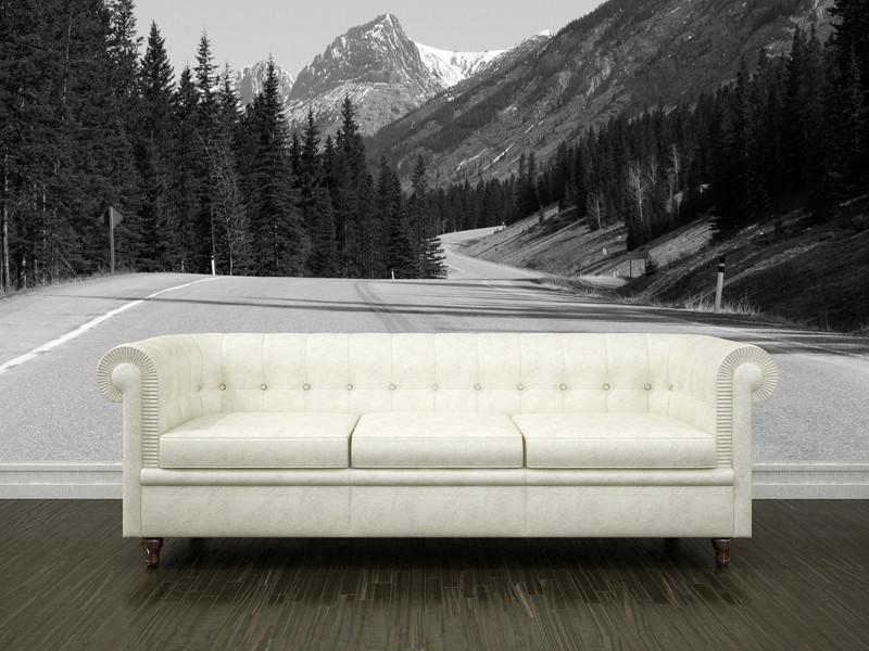 Highway to the Rocky mountains Wall Mural-Landscapes & Nature-Eazywallz
