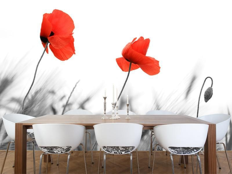 Poppy's field Wall Mural-Florals,Featured Category of the Month-Eazywallz