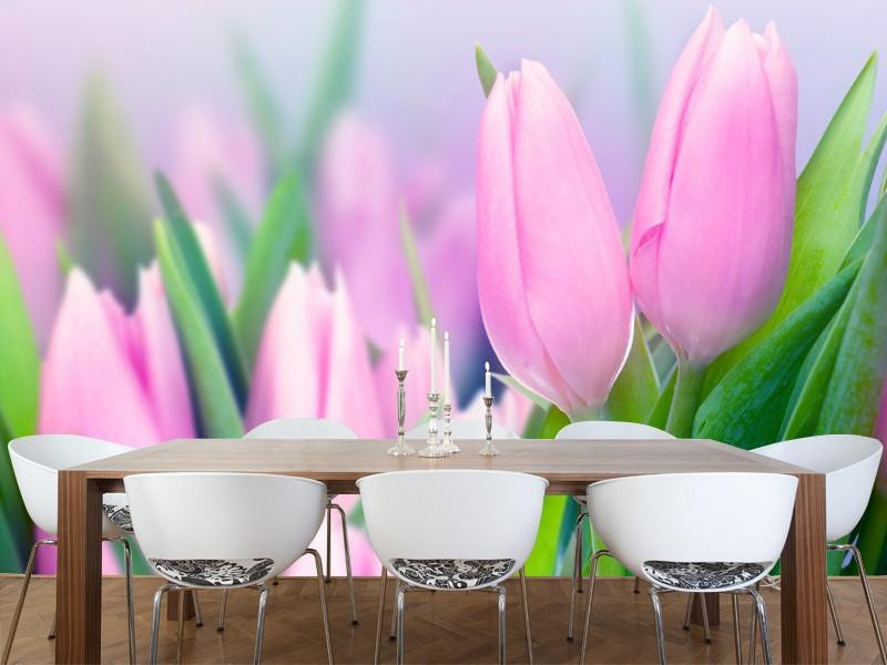 Spring tulips Wall Mural-Florals,Featured Category of the Month-Eazywallz