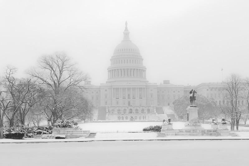 U.S. Capitol in Winter, USA Wall Mural-Black & White,Buildings & Landmarks-Eazywallz
