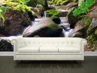 Waterfall on the rocks Wall Mural-Landscapes & Nature-Eazywallz