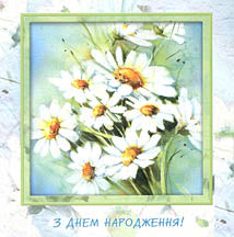 Daisies Square format Birthday Card 5.5 in