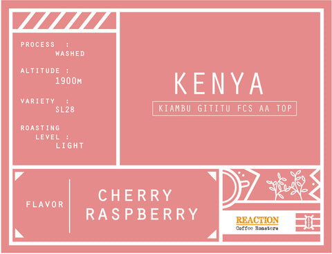 Single Origin - KENYA Kiambu Gititu FCS AA TOP