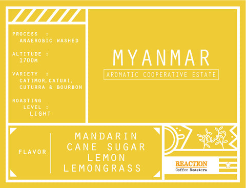 Single Origin - MYANMAR Aromatic Cooperative Anaerobic Washed