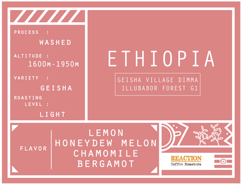 Single Origin - ETHIOPIA Geisha Village Dimma Illubabor Forest G1 Washed