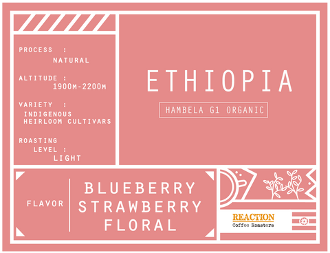 Single Origin - ETHIOPIA Hambela G1 Organic