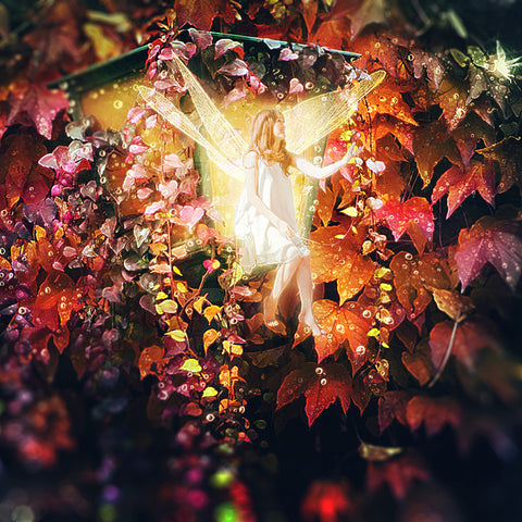 PSD File - Create Magical Fairy Photo Manipulation in Photoshop