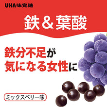 Load image into Gallery viewer, Gummy Supplement Iron and Folic Acid, Acai Flavor 40 Tablets (Quantity for about 20 days)