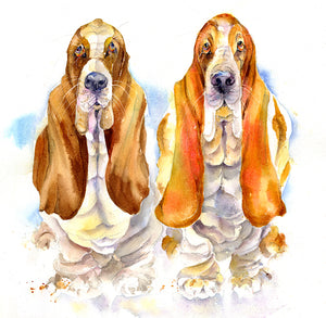 Bassett Hounds  Dog Print