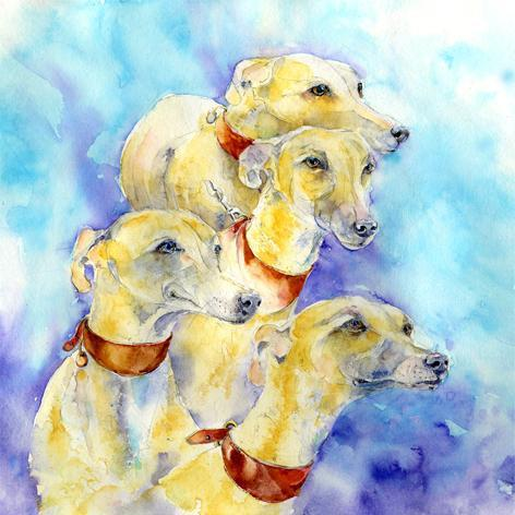 Dog Greyhound  Print