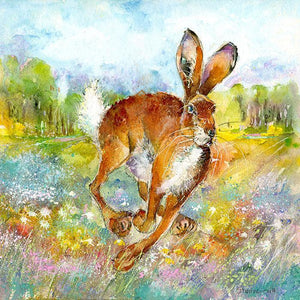 Hare Spring Meadow Print