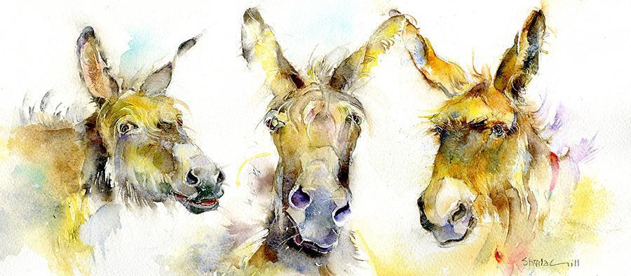Three Amigos Donkey Card-Sheila Gill Fine Art